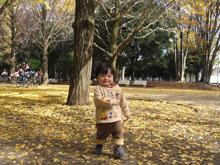 101121_2_blog.jpg